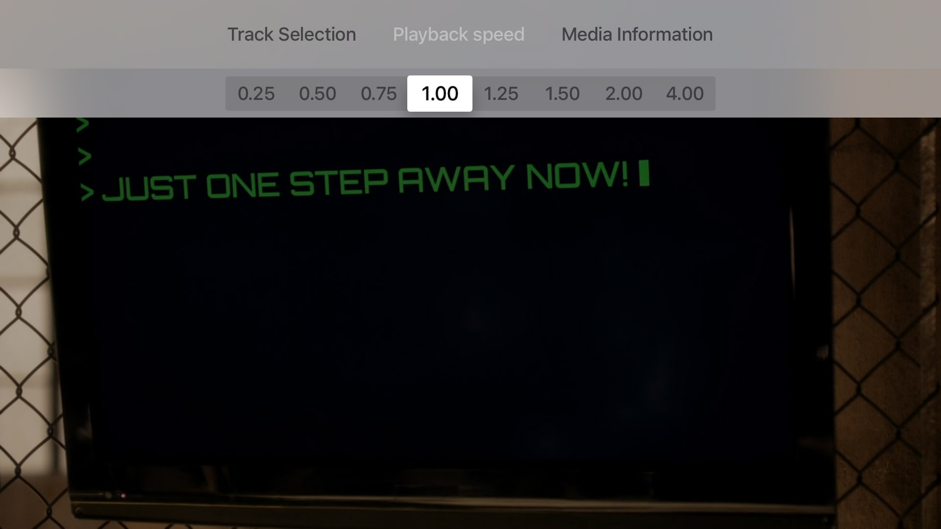 Adjust the playback speed of the video.